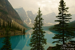 104. Turquoise (♥ MissChief Photography ♥) Tags: alberta canada water river trees mountain nature outdoors lakemoraine turquoise 117picturesin2017