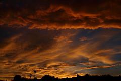 Sunset July 26 2017 #19 (Az Skies Photography) Tags: sun set sunset dusk twilight nightfall cloud clouds sky skyline skyscape skycandy skyfire red orange yellow gold golden salmon black canon eos 80d canoneos80d eos80d rio rico arizona az riorico rioricoaz arizonasky arizonaskyline arizonaskyscape arizonaskycandy arizonaskyfire july 26 2017 july262017 72617 7262017