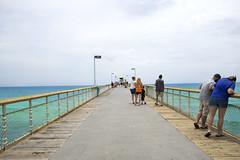 2017 PHOTOCHALLENGE, WEEK 30: Wheel of Photography (shannon_blueswf) Tags: emeraldcoast ocean beach florida green candid orange nikon nikond3300 nikonphotography photochallengeorg photochallenge2017 photochallenge pier
