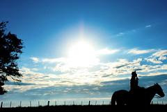 """""""Assim sou eu e me vou.."""" (Suzana Fernandes Fotografia) Tags: campo campeiro azul céu silhueta contra luz sombra gaúcho tropeiro lida campereada vida tradição rio grande do sul pampa coxilha cavalo horse caballo arreios assim sou eu"""
