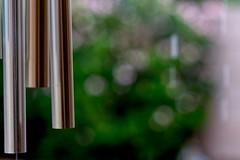 Home - Bells in the Rain (Cameron McGhie) Tags: cameronmcghie nikond5300 nikon az arizona rain raining bokehphotograpgy bokeh bellsintherain bell bells highsaturation saturation highshutterspeed shutterspeed light daytime day slowmo slowmotion homephoto homephotos