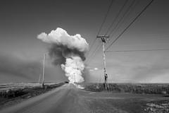 Burning Field (Curtis Gregory Perry) Tags: waldo hills oregon black white bw monochrome fire field burn burning smoke cloud mushroom wires telephone poles gravel road nikon d810 24mm