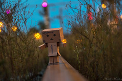 Danbo on the railway track (aureliemourlon) Tags: danbo railway track august night scenery sky sunset nature blue green light summer