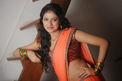 Indian Actress Haripriya Hot Sexy Images Set-2  (53)