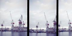 untitled (amanda aura) Tags: helsinki finland olympuspen harbour film