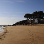 Noirmoutier (66) thumbnail