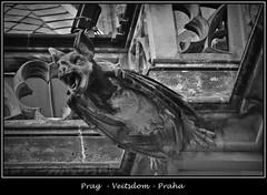 Gargoyles - 23 (fotomänni) Tags: prag prague praha gargoyles gargouille wasserspeier skulptur skulpturen veitsdom blackwhite schwarzweis noirblanc manfredweis