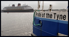 Pride of the Tyne (raytimlin242) Tags: disney magic shields ferry river tyne tyneside pride