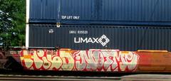 hilo - notme (timetomakethepasta) Tags: hilo mta notme 2much freight train graffiti art intermodal benching selkirk new york photography