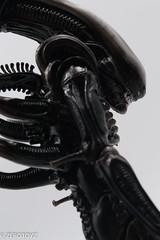 _DSC1027 (ZeroToyz) Tags: alien thedrone エイリアン revoltech 山口式 海洋堂 海洋堂山口式