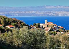 Masline i Mošćenice s Rijekom u pozadini (MountMan Photo (occasionally offline)) Tags: mošćenice liburnia primorskogoranska croatia cityscape landscape more