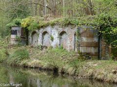 Basingstoke Canal (Iain Targett) Tags: 50walksinsurreyjessopsjauntthebasingstokecanal water