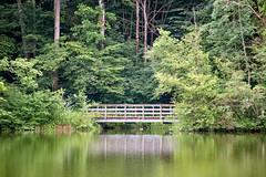 Wooden Bridge (.hd.) Tags: wooden bridge lake green water trees reflections gübsensee stgallen