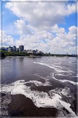 Frothy Swirls (Note-ables by Lynn) Tags: ottawa parliamenthill ottawariver