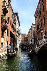 40 Venice