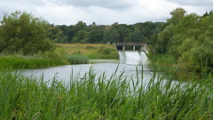 20170714 Wlk frm Clumber_0007 Weir from~Ford~R Poulter~SK 64141 75200 (paul_slp5252) Tags: nottinghamshire clumberpark riverpoulter sk6414175200 ford weir