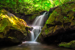 Lower Grotto Falls (·tlc∙) Tags: waterfall water lowergrottofalls smokymountainnationalpark hiking trails outdoors waterblur scenic green