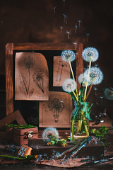 Aircraft Inspiration (Dina Belenko) Tags: white flower aged art beauty bouquet decoration retro style floral artistic color conceptual flora plant vase antique vintage stem dandelion seed nature dark beautiful green wind blowball fluffy fun delicate black natural weed enchanting fantasy flying gently imagination magical blueprint airplane aviation brown construction craft detail fine handcrafted stilllife