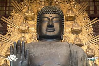 Daibutsu at Tōdai-ji Temple, Nara