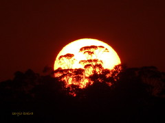 ... nascer do sol ... (sergio boeira) Tags: sol nascer do amanhecer sun