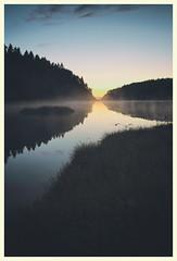 (Frank S. Schwabe) Tags: midnightsun nordmøre norway kristiansund gløsvågen reflection fog lake canon curves ef24mmf28isusm eos water grass night
