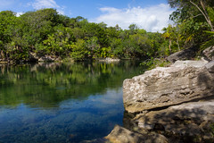 Cenote (Jerry Bowley) Tags: rivieramaya xelha ecopark cenote allinclusive