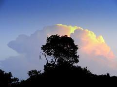 Spring Branch Sunset (austexican718) Tags: cloud sky texas dusk treeline horizon hillcountry