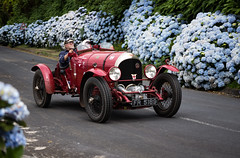 1924 FR5189   being  mugged by hydrangeas . The first supercharged Bentley in the Azores on the Vintage Azores Rally. (adamnsinger) Tags: fr5189 first supercharged bentley 3 litre w o vintage azores acores rally emilie smith blower blown may cunliffe