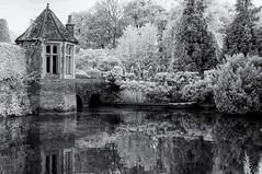 Still water (David Feuerhelm) Tags: bw blackandwhite contrast nikkor outdoors garden water reflection foliage trees shrubs tower window moat kentwellhall suffolk england serene infrared silverefex