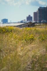 Atlantic City (cuiti78) Tags: atlantic city new jersey usa