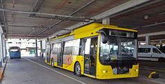 U-OV, Qbuzz 4602 China 2017 en GVU 27 Leyland 1956 (peter.velthoen) Tags: bus stadsbus autobus elektrischebus utrecht uov qbuzz garage gvu27 leyland leylandworldmaster1956 duurzaamuovnl qbuzz4602 verheul