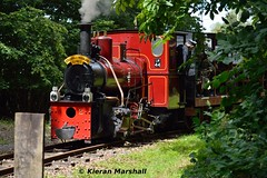 LM44 at Stradbally, 16/7/17 (hurricanemk1c) Tags: railways railway train trains ireland industrialrailway narrowgauge stradbally stradballywoodlandsrailway 2017 lm44 bórdnamóna irishturfboard steamloco andrewbarclay clonsatworks