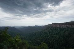 Springbrook National Park, Queensland (jlauret) Tags: australia springbrooknationalpark queensland