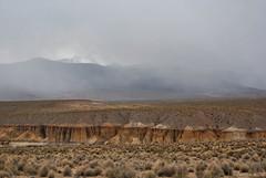 Camino al salar de Surire (Javiera C) Tags: chile arica parinacota lauca parquenacional nationalpark naturaleza nature altiplano highlands reservanaturallasvicuñas guallatiri montaña mountain quebrada canyon storm tormenta nubes clouds