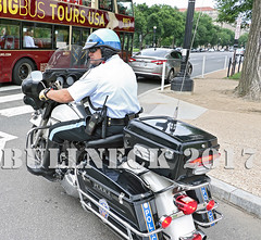 USPP, June '17 -- 53 (Bullneck) Tags: nationalmall washingtondc spring americana federalcity cops police heroes uniform macho toughguy biglug bullgoons motorcops motorcyclecops motorcyclepolice boots breeches uspp usparkpolice harley motorcycle