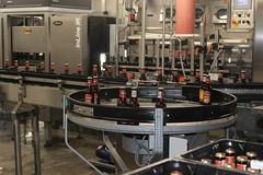 The bottling line at the Texel brewery (Davydutchy) Tags: texel oudeschild eiland island insel île noordholland nederland netherlands niederlande paysbas texelse brouwerij brewery brauerei pivovar bier beer bière pivo cerveza beoir пиво biero bir øl μπύρα sör بيرة בִּירָה bottelarij bottling abfüllen fill june 2017