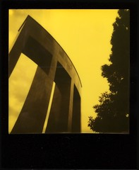 Architecture vs Nature (o_stap) Tags: instant analog makerealphotos filmisnotdead believeinfilm ishootfilm polaroid600 impossibleproject polavoid polaroid