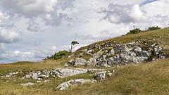 Landscape - SandPoint - Middlehope--4 (oldparson) Tags: nationaltrust sandpoint sea woodspring coast landscape limestone sandbay