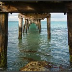 Colours under the pier at Robe, 2006. Peter Neaum_ thumbnail
