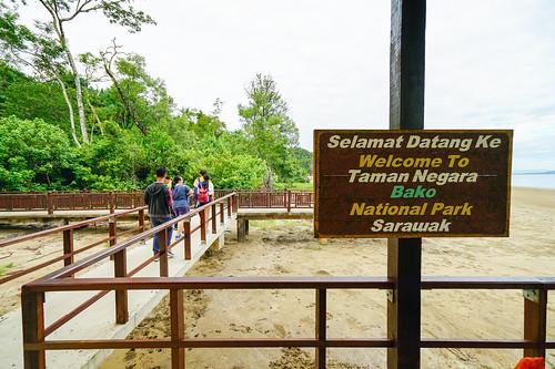 TAMAN-NEGARA-BAKO-1