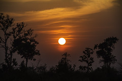 Sunset in Anlong Klong (Keith Kelly) Tags: anlongklong asia cambodge cambodia kh kampuchea keithkelly krakor pursatprovince southeastasia country countryside farmland keithakelly rural sun sunset pouthisat