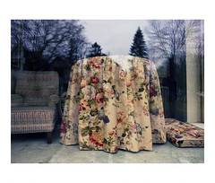 Floral fabric covering a table in a shop window (Richard C. Johnson: AKA fishwrapcomix) Tags: mamiya645pro mamiyasekor45mmf28 film kodakportra400 analog analogue scanfromnegative filmisnotdead ishootfilm color economicdownturn thegreatrecession sunsetsinthewest sunrisesintheeast civisromanussum spqr landscapeofdecline reflections storefront reflection taxidermy selfportrait shadow window pines vermeer cloudy midwest chair furniture table upholstery duluth minnesota icamesofarforbeauty sictransitgloriamundi