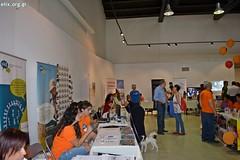 elix-2-volunteers-festival-july-2017-7 (ΕΛΙΞ / ELIX) Tags: elixconservationvolunteersgreece 2volunteersfestival athens july 2017 skywalker prize refugee familiessupport volunteering