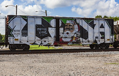 (o texano) Tags: houston texas graffiti trains freights bench benching vida wholecar