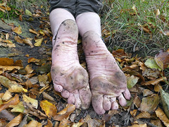 Autumn soles (Barefoot Adventurer) Tags: barefoot barefooting barefoothiking barefeet barefooter barefooted baresoles barfuss autumnbarefooting autumnsoles anklet toughsoles muddyfeet wrinkledsoles naturalsoles naturallytough nature leaves leathertoughsoles flexiblefeet forest healthyfeet happyfeet hardsoles instep arches connected earthsoles earthing earthstainedsoles energy strongfeet stainedsoles soles