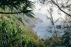 Crazy Na Pali Coast Kauai, Hawaiili (Oliver Raatz) Tags: jungle colors inhalt hawaii kauai nature