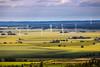 Taken From Omberg. (bobban25) Tags: canon eos 80d ef70300mm f456 is usm ef70300mmf456isusm östergötland sverige sweden scandinavia canoneos80d canon80d omberg vindkraft landskap landscape field fält tree träd green