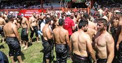 Edirne / Kirk Pinar / Oil wrestling Festival 2017 (d.mavro) Tags: athlet pehlivan pehlwan pahlavan wrestling wrestler wrestle oil oily grecoroman güreş