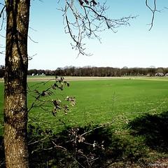 DUTCH LANDSCAPE (JaapCom) Tags: wezep landscape netherlands nature holland