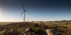 the new arcadia (liam.jon_d) Tags: alternativeenergy australia australian billdoyle energyaustralia lavender lavendertrail longdistance lowcarbonenergy midnorth palisade palisadeassetmanagement panorama panoramic renewableenergy renewables ridge ridgeline sa southaustralia southaustralian track turbine walkingtrail waterloo waterloowindfarm windfarm windpower windturbine